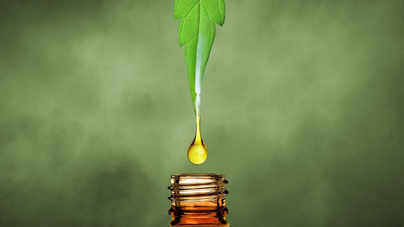 Hemp Oil Versus CBD Oil: What's The Difference? – BellFeed